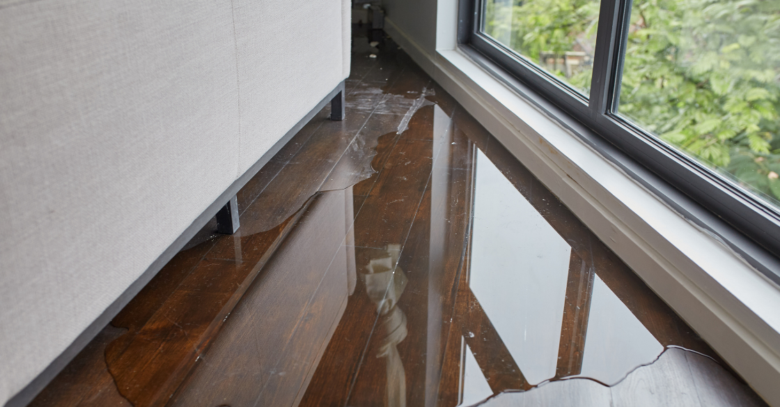 Leaking windows causing damage to wooden floors inside a home