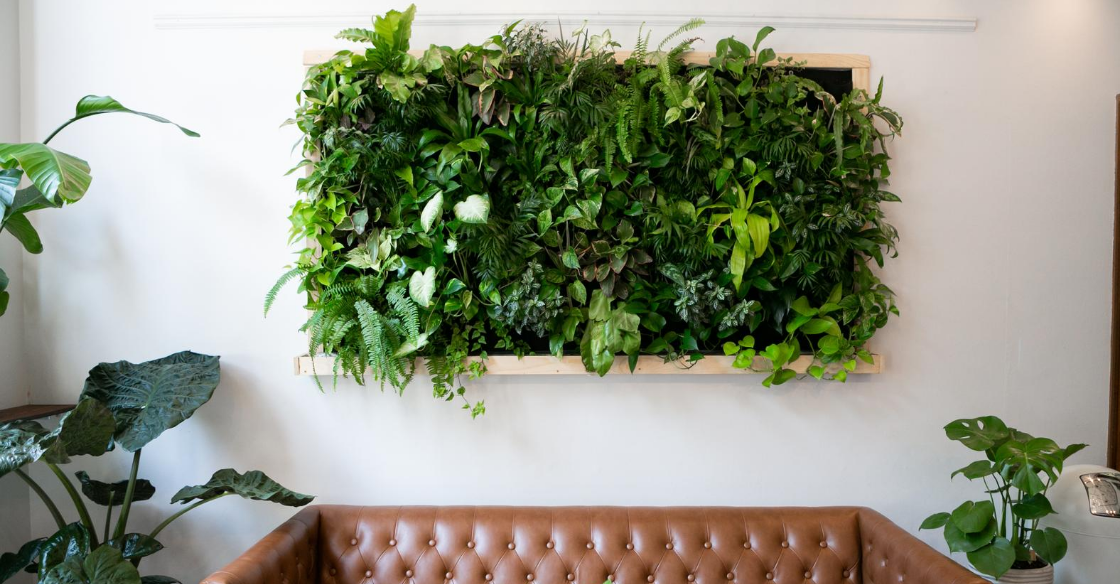 ''living wall'' in an apartment