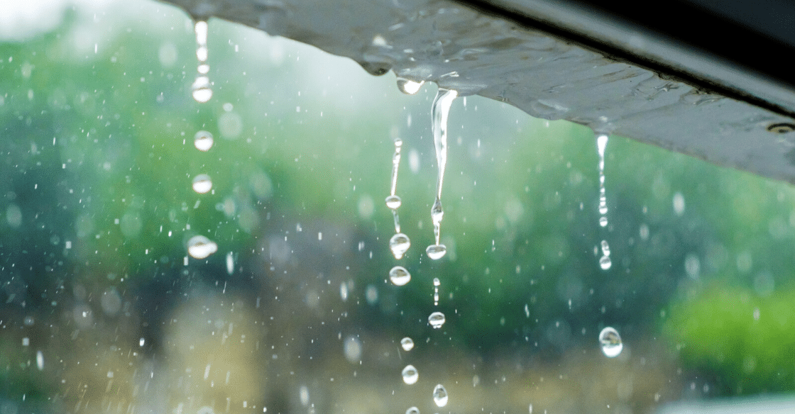 Weather proof your windows to protect from water damage