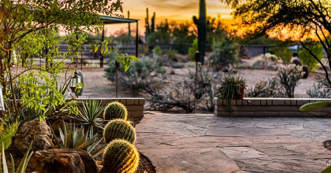 Backyard landscaping in Nevada