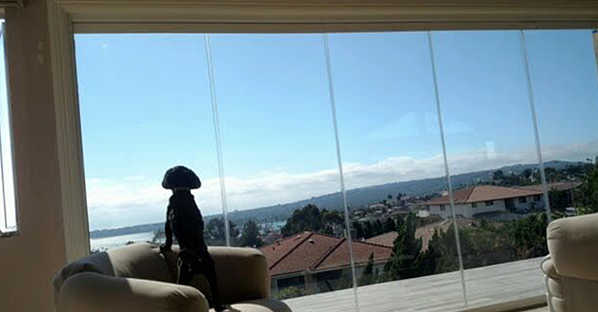 views frameless glass
