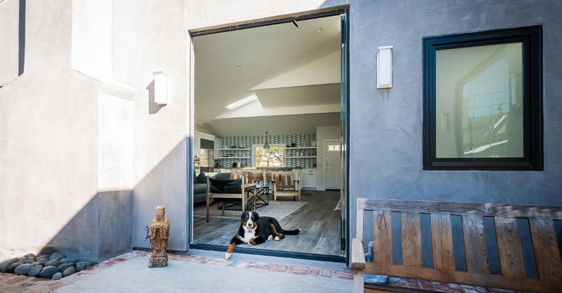 Dog sitting in the open patio doorway