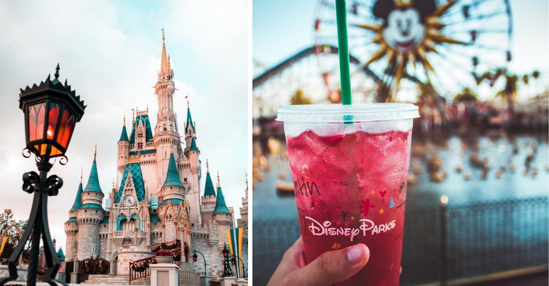 Disneyland Castle and California Adventure